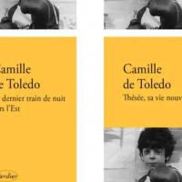 NOTRE SÉLECTION : THÉSÉE, SA VIE NOUVELLE DE CAMILLE TOLEDO (LIVRE)